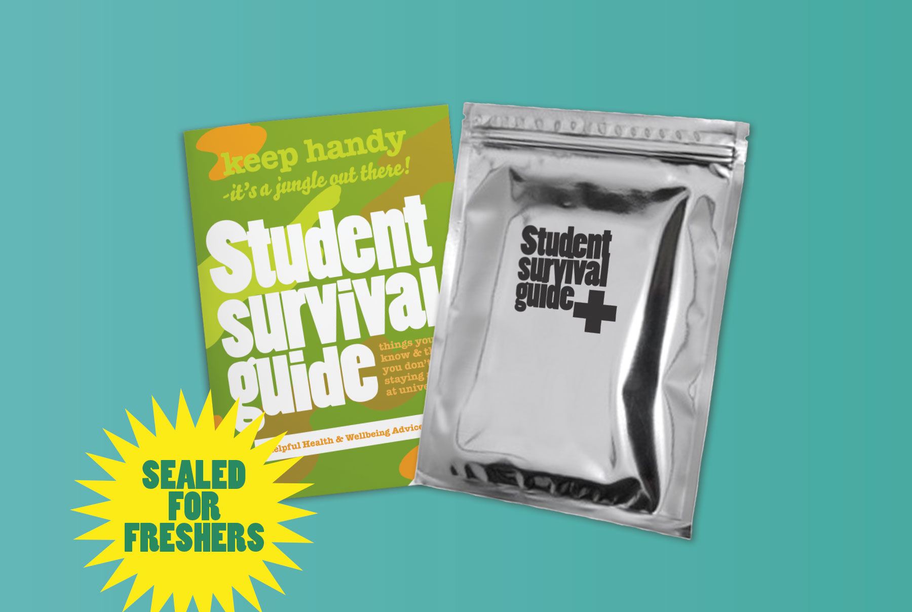 Student Food Survival Guide Brochure Design with Packaging